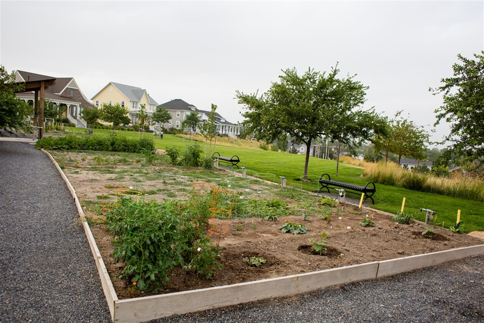 North Shore Garden Plots