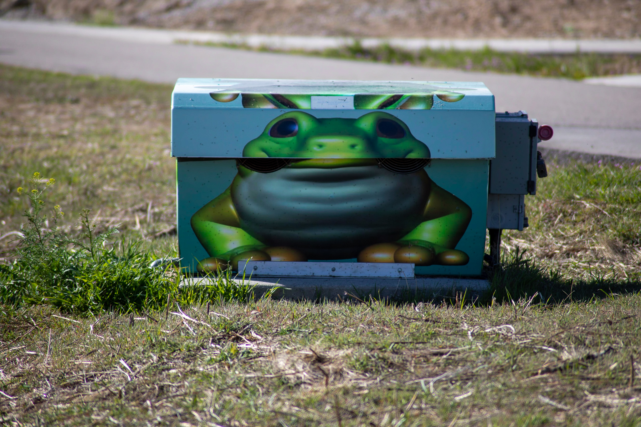 Frog utility box